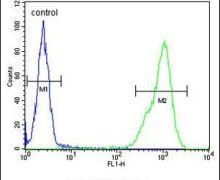 TPPP3 Antibody (PA5-24925)