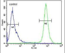 TRAPPC3 Antibody (PA5-23684)