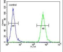 TTPAL Antibody (PA5-25088)
