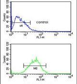 WDR82 Antibody (PA5-24741)