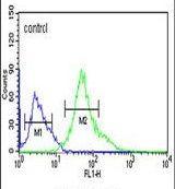 XBP1 Antibody (PA5-25010)