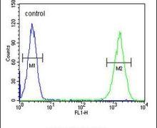 ZNF30 Antibody (PA5-24104)
