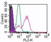 TLR3 Antibody (MA5-16184)