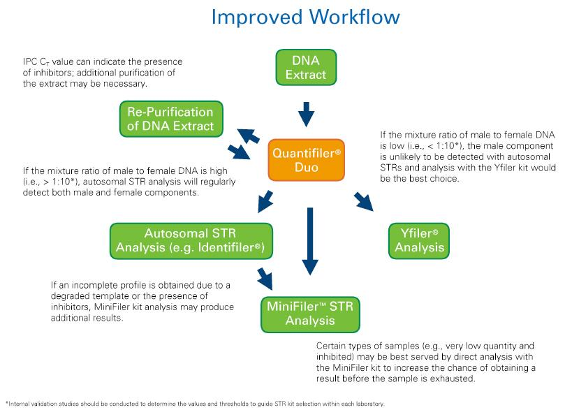 Figure 1: Improved Workflow