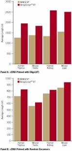 Longer Average cDNA Length after Reverse Transcription Using ArrayScript™