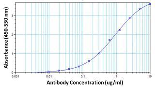 hCG beta Antibody (MA5-14703)