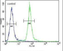PCDP1 Antibody (PA5-23823)